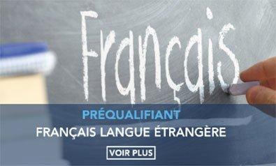 La formation Français Langue Étrangère (FLE)